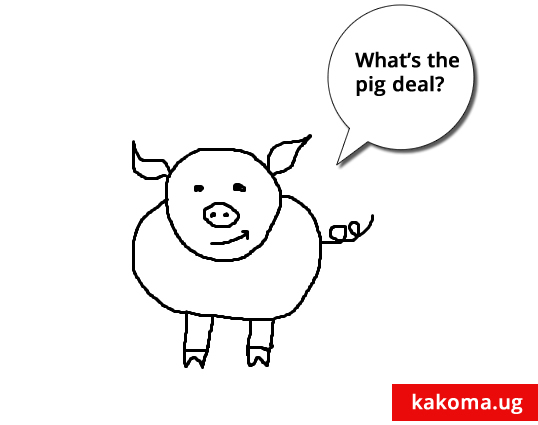 whats_the_pig_deal